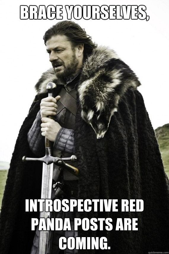 brace yourselves introspective red panda posts are coming - Brace yourself