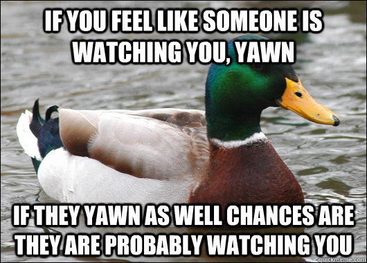 if you feel like someone is watching you yawn if they yawn  - Actual Advice Mallard