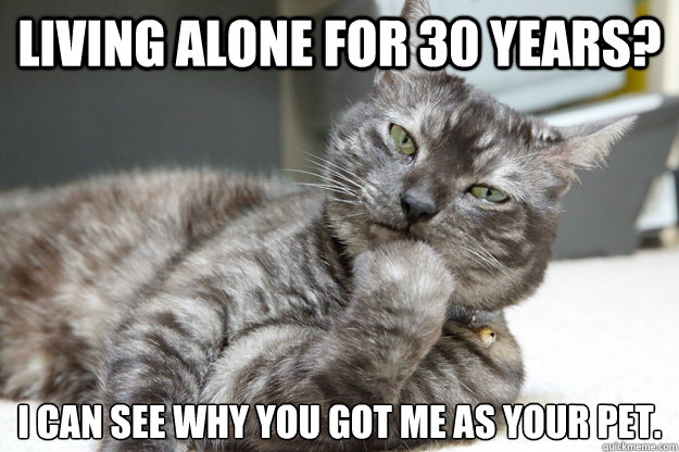 living alone for 30 years i can see why you got me as your  - Not Amused Cat