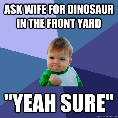ask wife for dinosaur in the front yard yeah sure - Success Kid