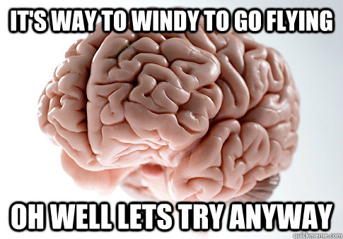 its way to windy to go flying oh well lets try anyway - Scumbag Brain