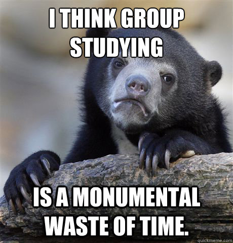 i think group studying is a monumental waste of time - Confession Bear
