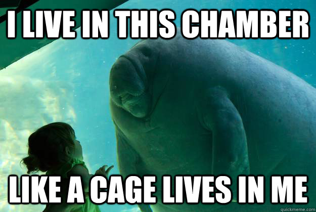 i live in this chamber like a cage lives in me - Overlord Manatee