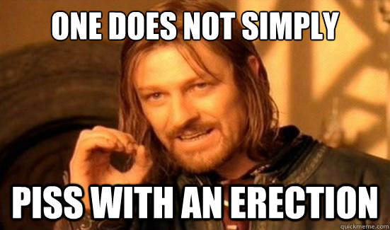 one does not simply piss with an erection - Boromir