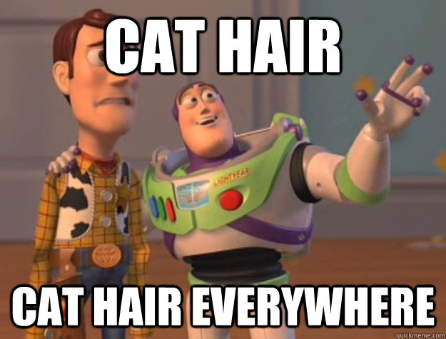 cat hair cat hair everywhere - Buzz Lightyear