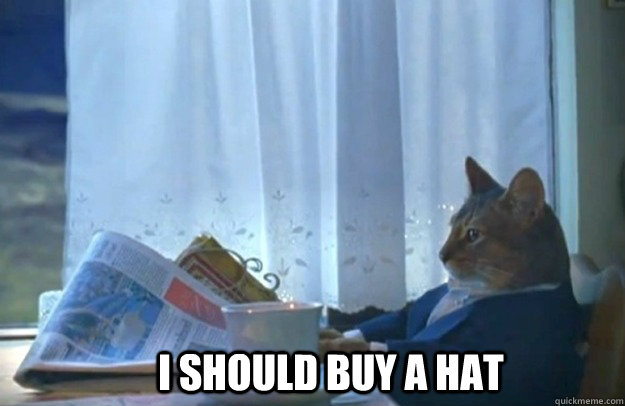 i should buy a hat - Sophisticated Cat