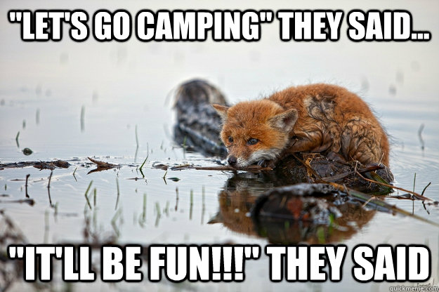 lets go camping they said itll be fun they said -