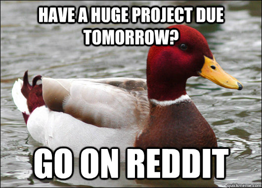have a huge project due tomorrow go on reddit - Malicious Advice Mallard