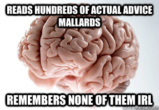 reads hundreds of actual advice mallards remembers none of  - Scumbag Brain Strikes Again!