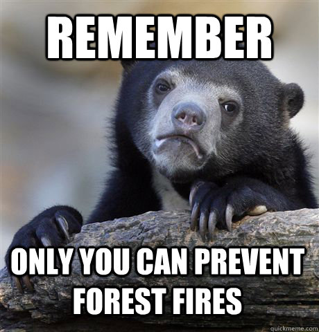 remember only you can prevent forest fires - Confession Bear