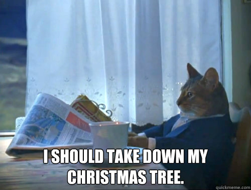 i should take down my christmas tree - The One Percent Cat