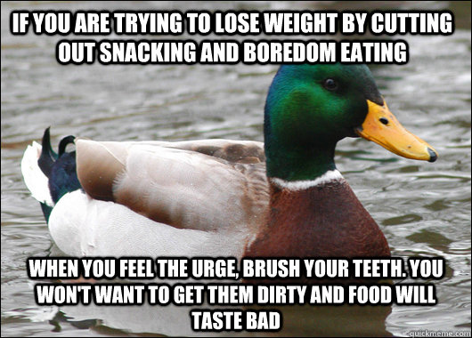 if you are trying to lose weight by cutting out snacking and - Actual Advice Mallard