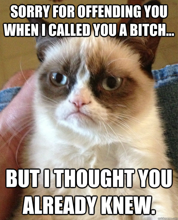 sorry for offending you when i called you a bitch but i t - Grumpy cat