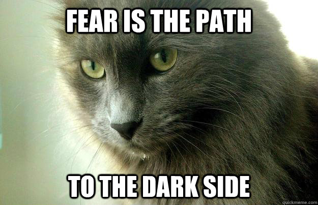 fear is the path to the dark side - Yoda Cat