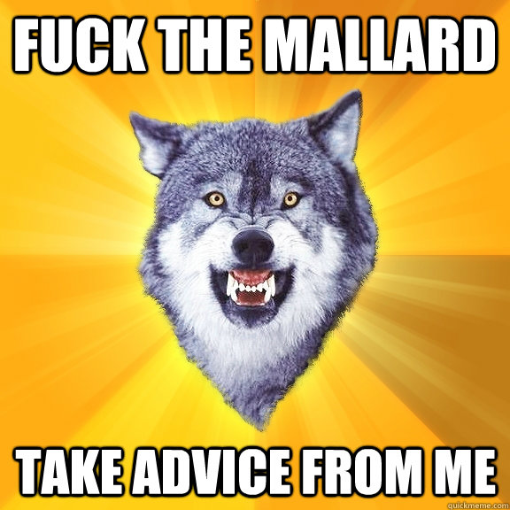 fuck the mallard take advice from me - Courage Wolf