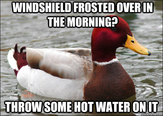 windshield frosted over in the morning throw some hot water - Malicious Advice Mallard