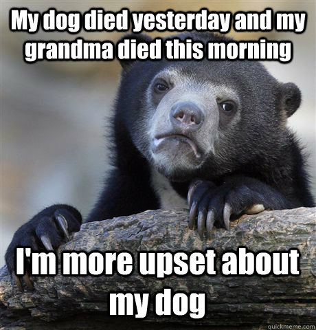 my dog died yesterday and my grandma died this morning im m - Confession Bear