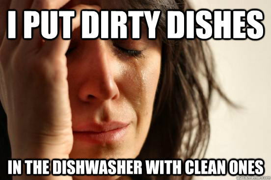 i put dirty dishes in the dishwasher with clean ones - First World Problems