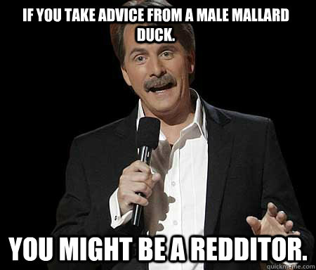 if you take advice from a male mallard duck you might be a  - Jeff Foxworthy, You know youre a