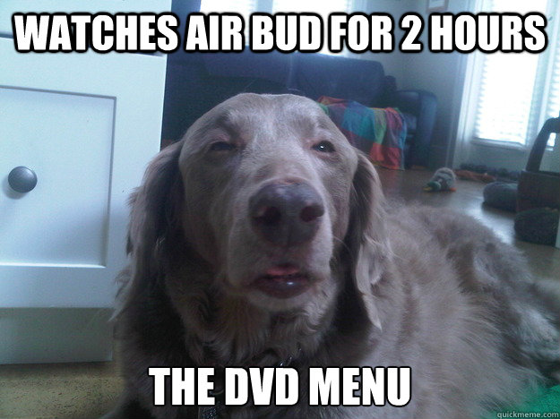 watches air bud for 2 hours the dvd menu - 10 Dog