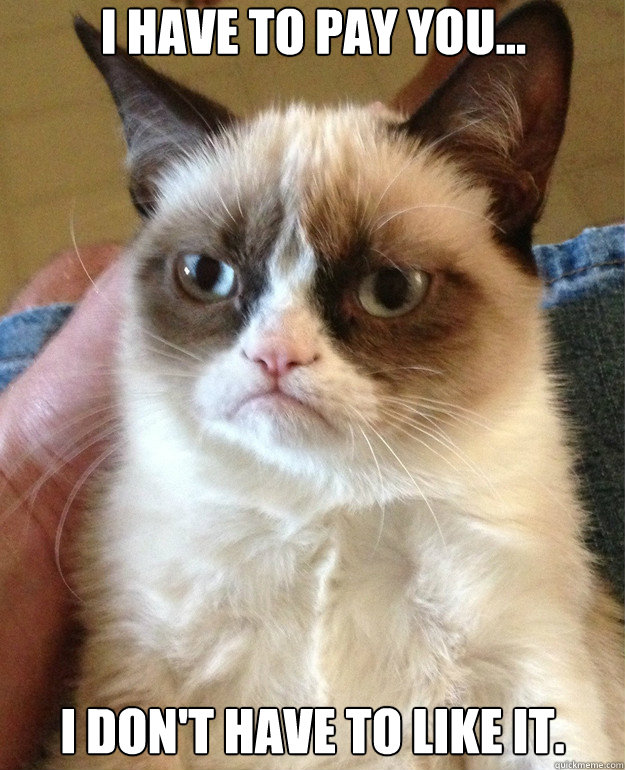i have to pay you i dont have to like it  - Grumpy Cat