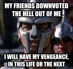 my friends downvoted the hell out of me i will have my venge - 