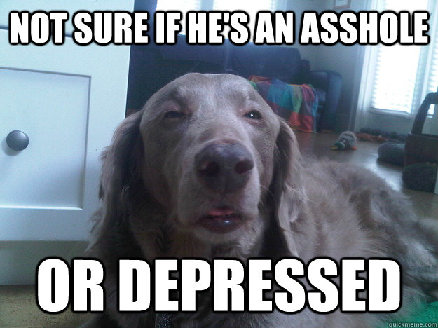 not sure if hes an asshole or depressed - 10 Dog