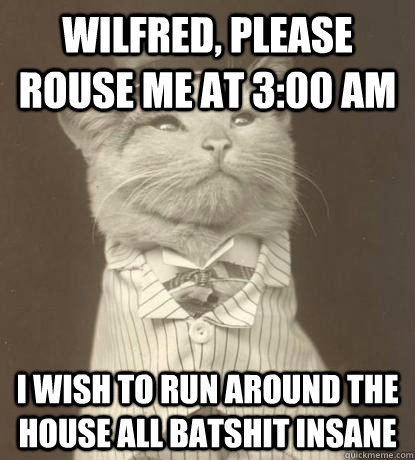 wilfred please rouse me at 300 am i wish to run around the - Aristocat