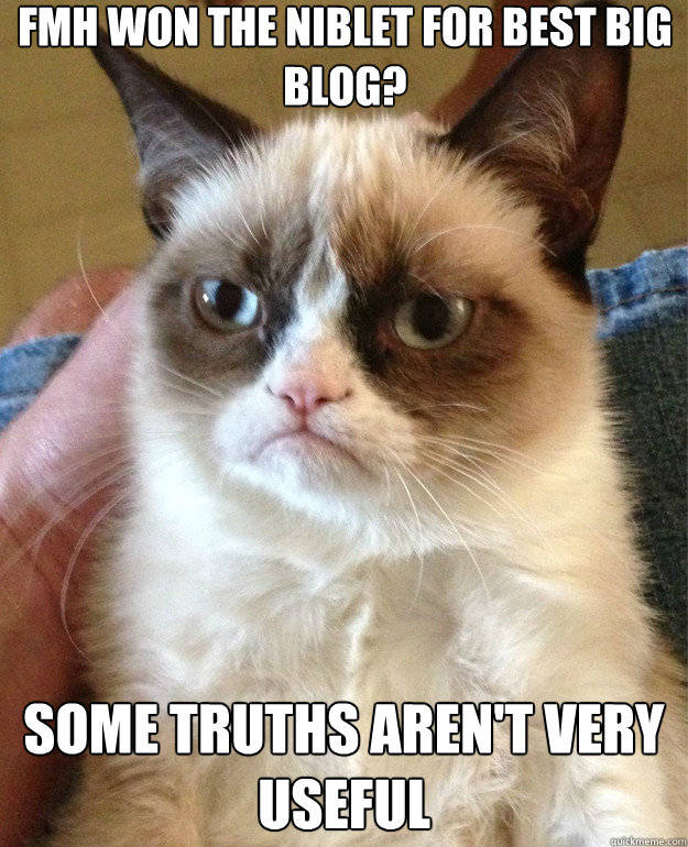fmh won the niblet for best big blog some truths arent ver - Grumpy Cat