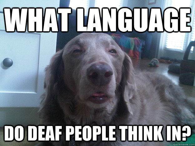 what language do deaf people think in - 10 Dog