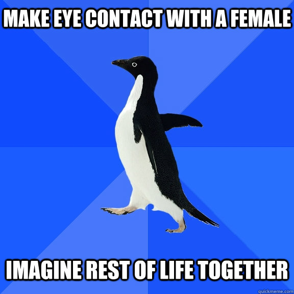make eye contact with a female imagine rest of life together - Socially Awkward Penguin