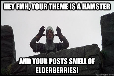 hey fmh your theme is a hamster and your posts smell of eld - Monty Python and the Holy Grail