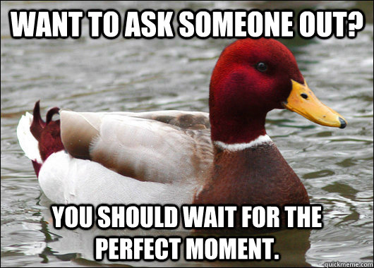 want to ask someone out you should wait for the perfect mom - Malicious Advice Mallard