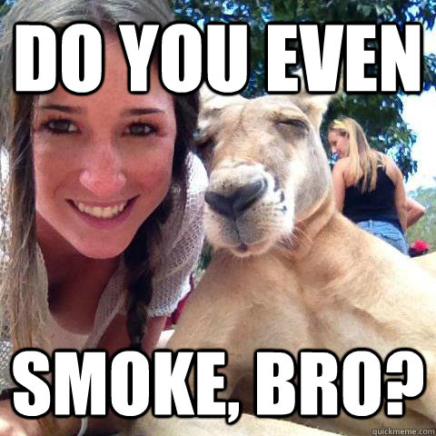 do you even smoke bro - 10 Joey