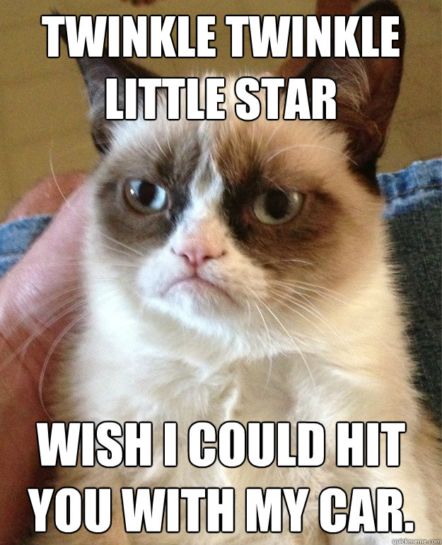 twinkle twinkle little star wish i could hit you with my car - Grumpy cat
