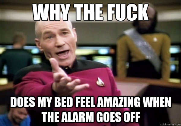 why the fuck does my bed feel amazing when the alarm goes of - Why The Fuck Picard