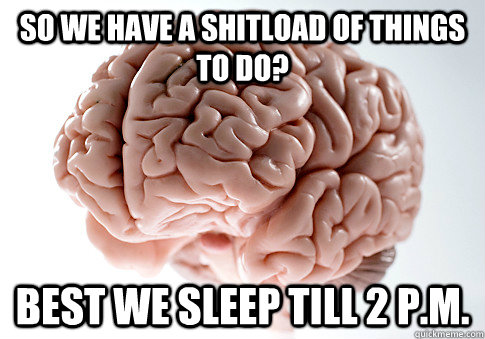 so we have a shitload of things to do best we sleep till 2  - Scumbag Brain
