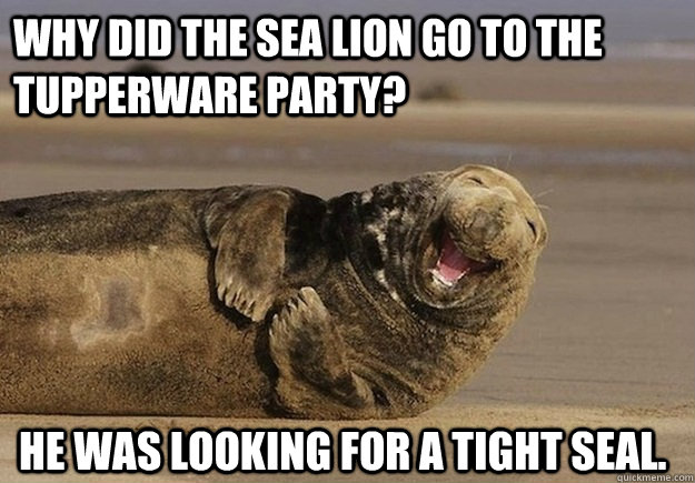 why did the sea lion go to the tupperware party he was look - Sea Lion Brian