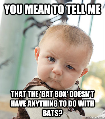 you mean to tell me that the bat box doesnt have anything - skeptical baby