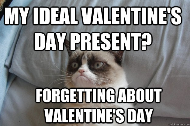 my ideal valentines day present forgetting about valentine - GrumpyCatOL