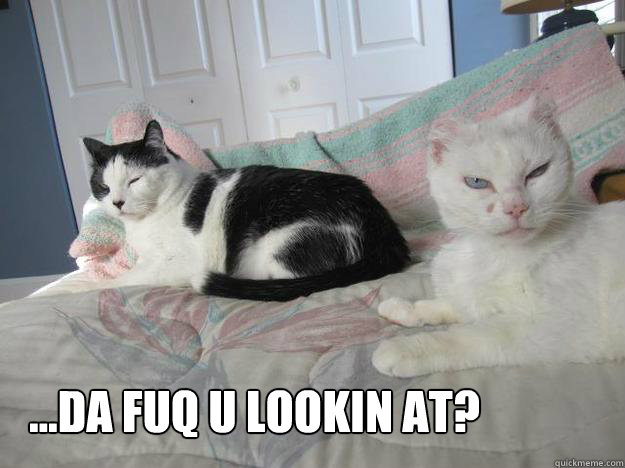 da fuq u lookin at -