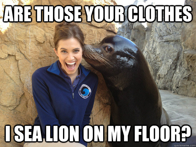 are those your clothes i sea lion on my floor - Crazy Secret