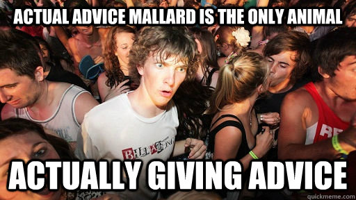 actual advice mallard is the only animal actually giving adv - Sudden Clarity Clarence