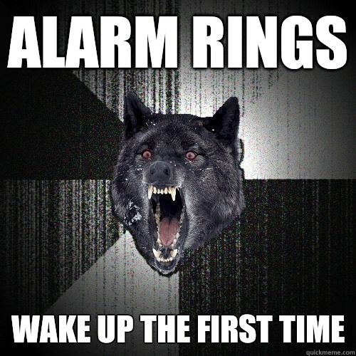 Alarm rings kick wall - Insanity Wolf