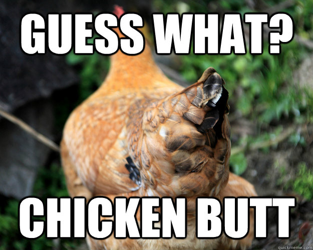 guess what chicken butt - 