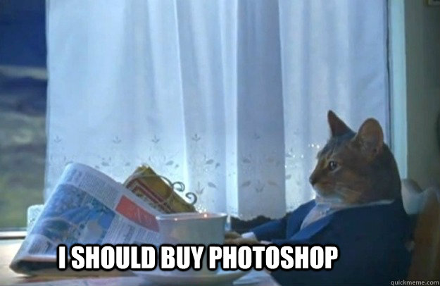 i should buy photoshop - Sophisticated Cat