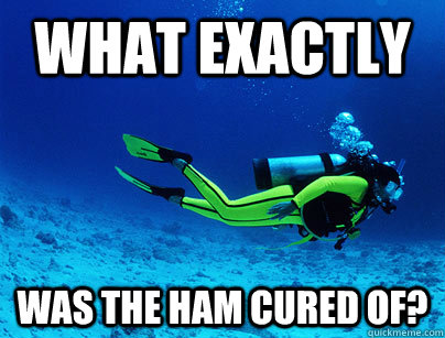 what exactly was the ham cured of - Deep Sea Diver