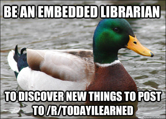 be an embedded librarian to discover new things to post to  - Actual Advice Mallard