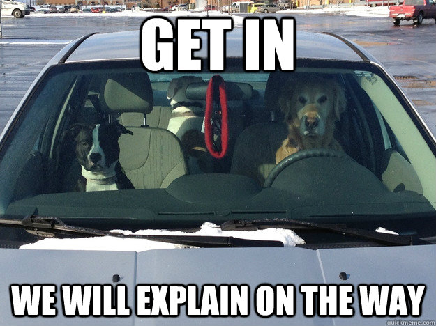 get in we will explain on the way -