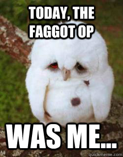 today the faggot op was me - Sad Owl